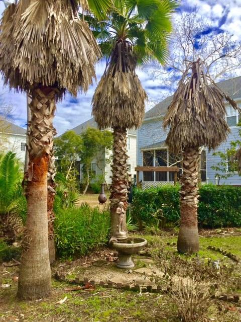 Park West Homes For Sale - 3148 Sonja, Mount Pleasant, SC - 9
