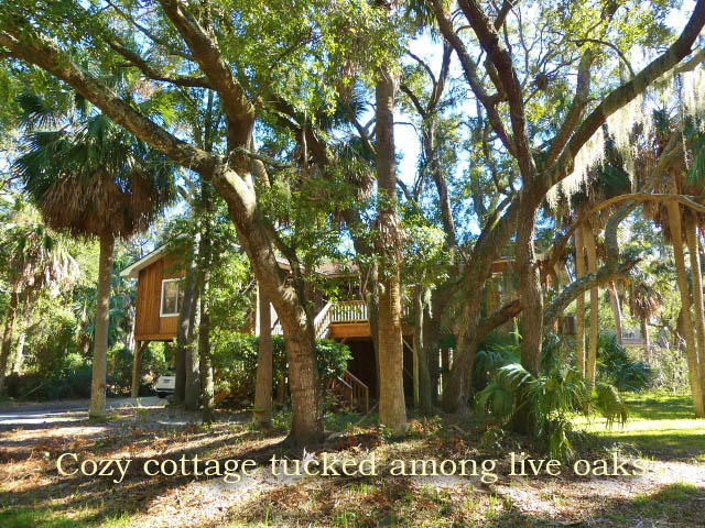 311 Jungle Road Edisto Island, SC 29438
