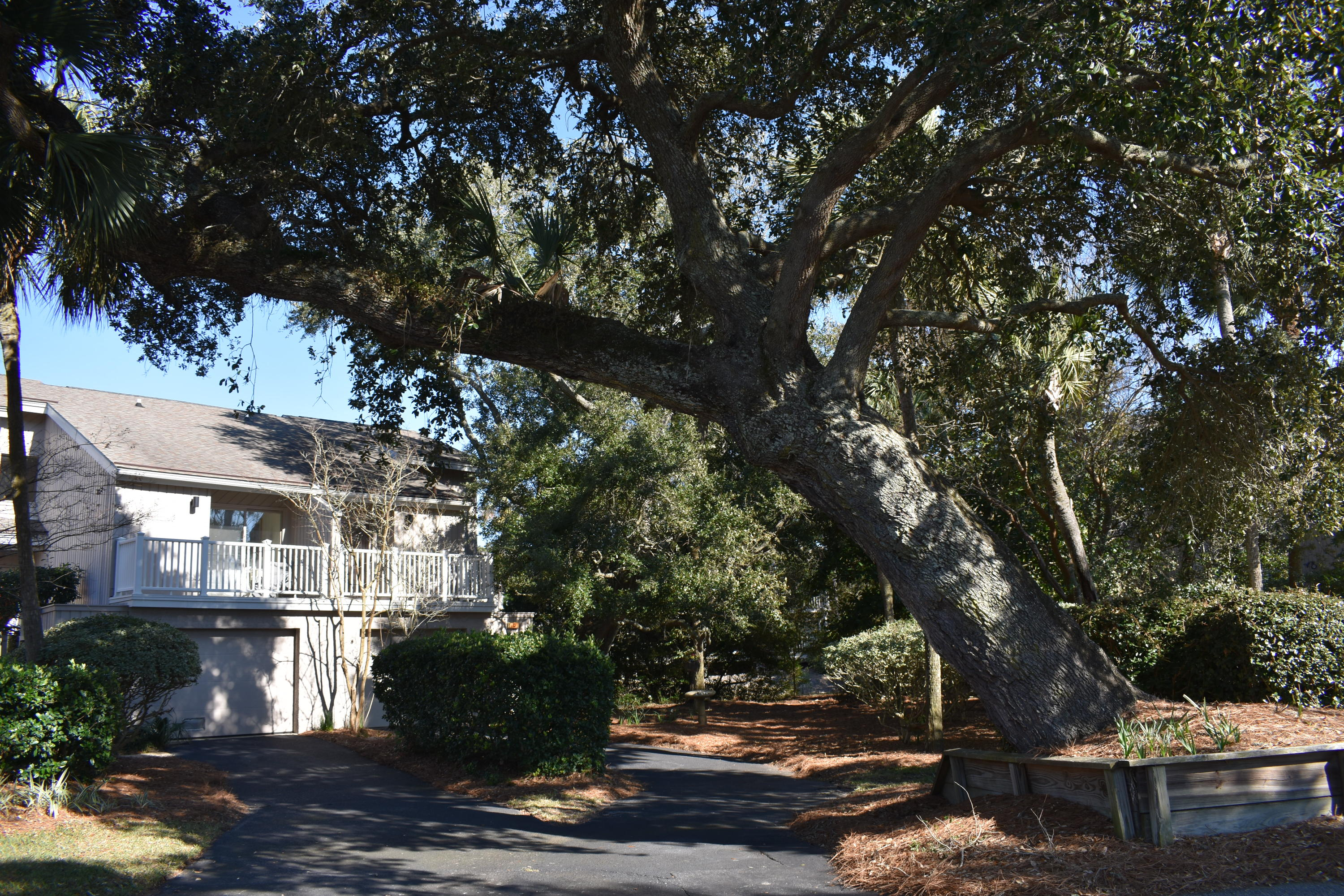 13 Back Court Isle Of Palms, SC 29451