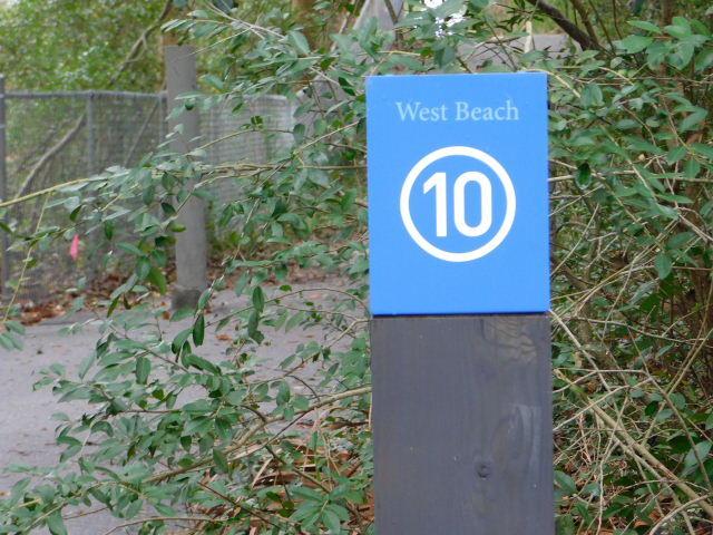 97 Surfscoter Lane Kiawah Island, SC 29455