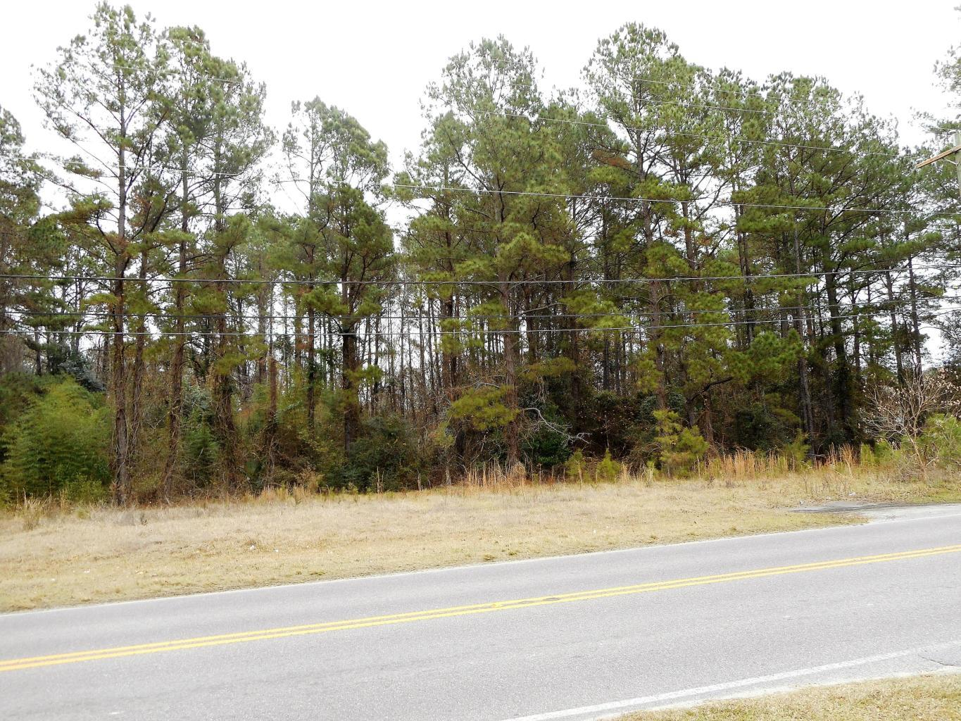Forest Hills Road Walterboro, SC 29488