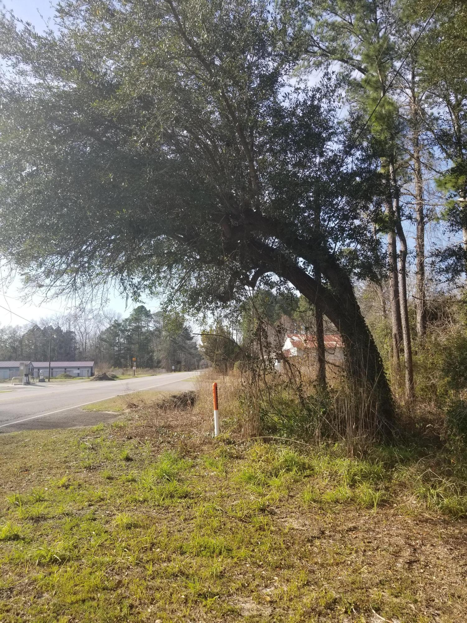 Johnston Avenue Reevesville, SC 29471