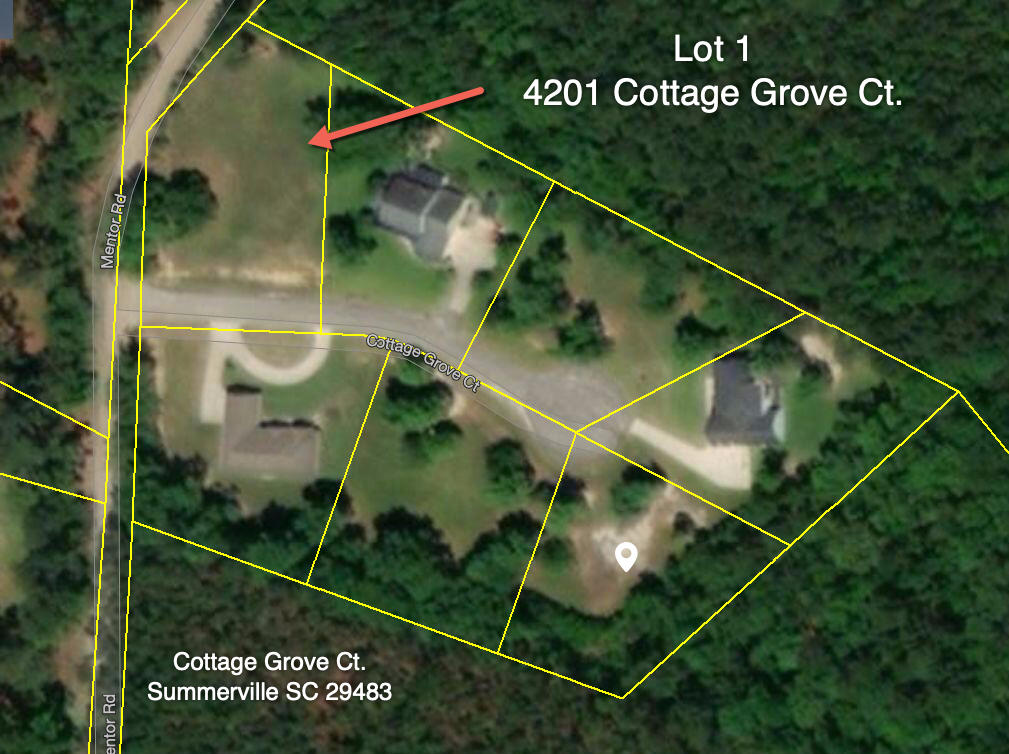 4201 Cottage Grove Court Summerville, SC 29483