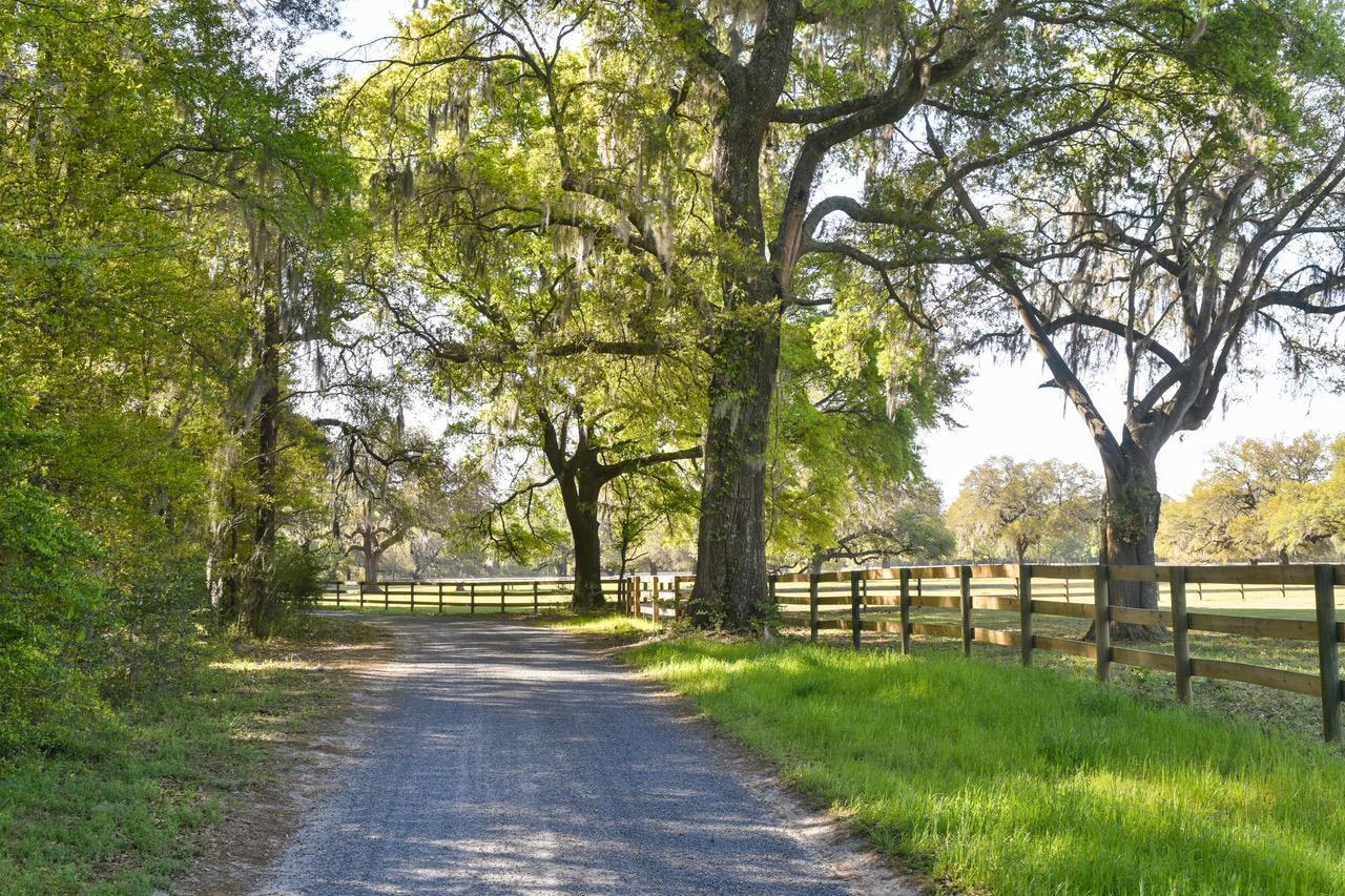 18 Middleton Oaks Road Charleston, SC 29414