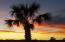 Amazing sunsets every night
