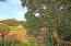31 Fairway Dunes Lane, Isle of Palms, SC 29451