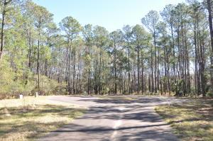 43 Nesting Egret Drive, Johns Island, SC 29455