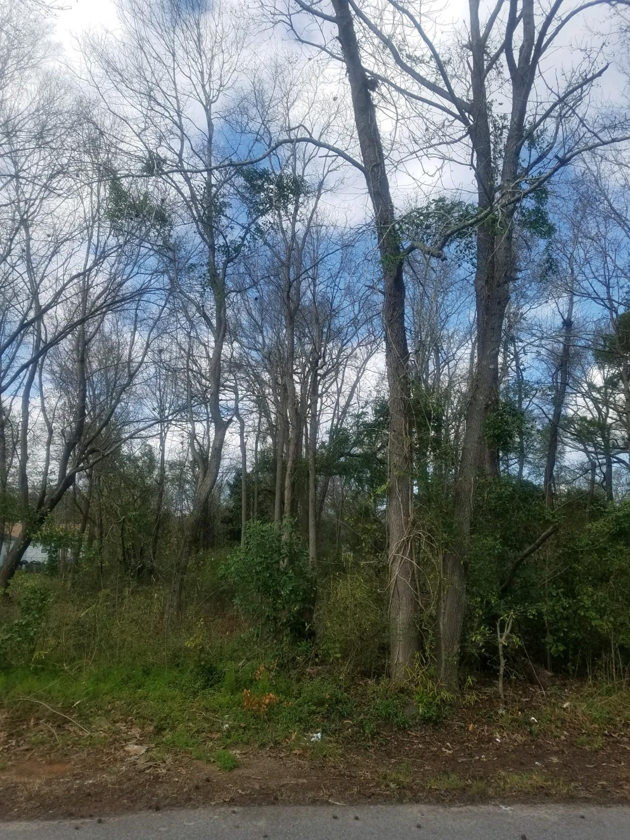 Lot 88 Highpoint Drive North Charleston, SC 29406