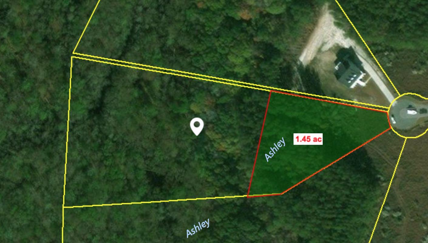 1336 Wood Sorrel Drive Moncks Corner, SC 29461
