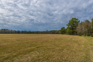 7826 SNIDERS HIGHWAY, WALTERBORO, SC 29488  Photo 20