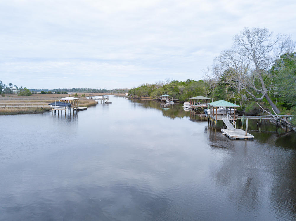 Bulow Plantation Homes For Sale - 1039 Bulow Point, Johns Island, SC - 5