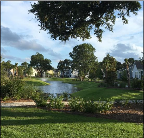 Oyster Point Homes For Sale - 1471 Longspur, Mount Pleasant, SC - 3
