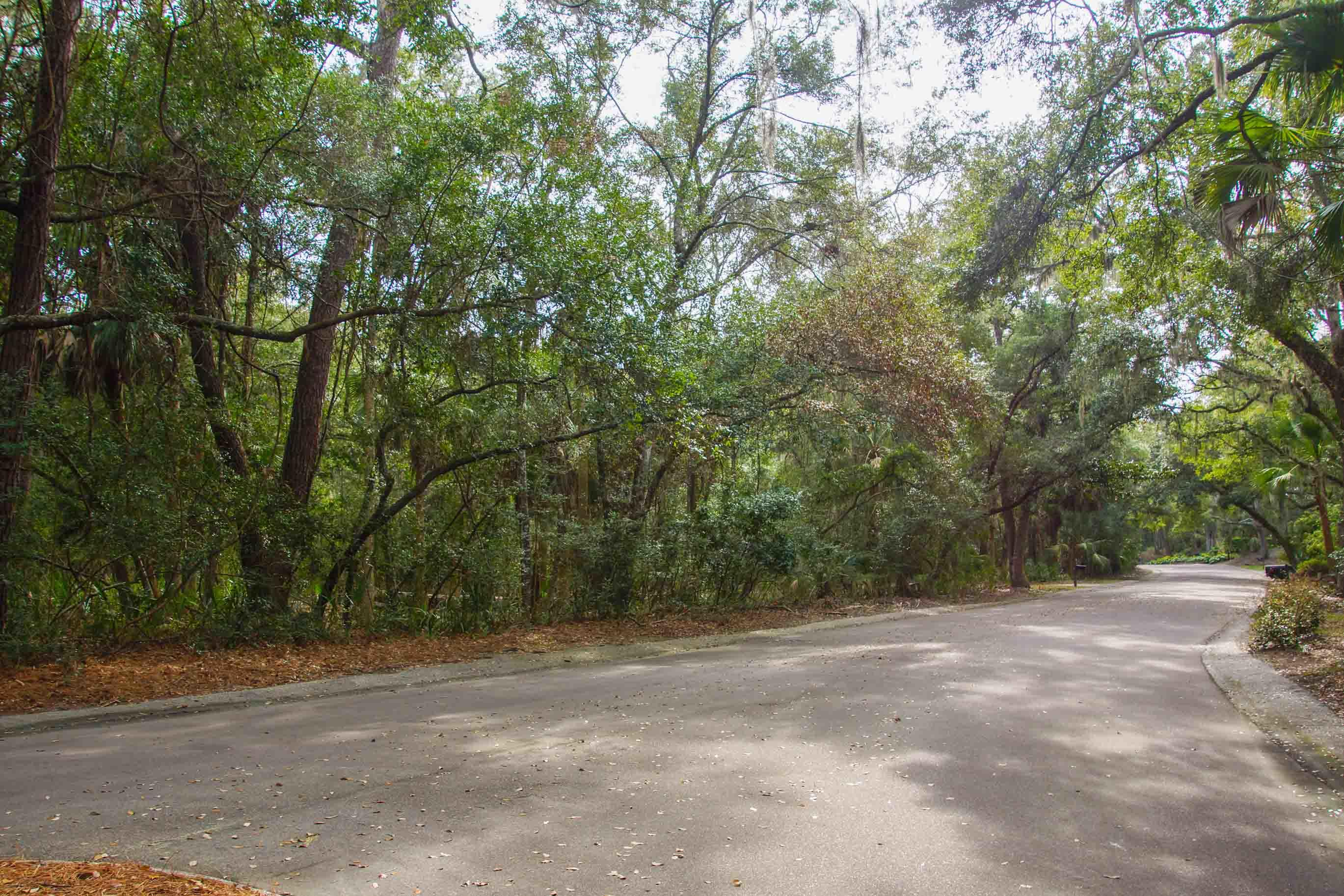 Seabrook Island Lots For Sale - 2675 Gnarled Pine, Seabrook Island, SC - 13