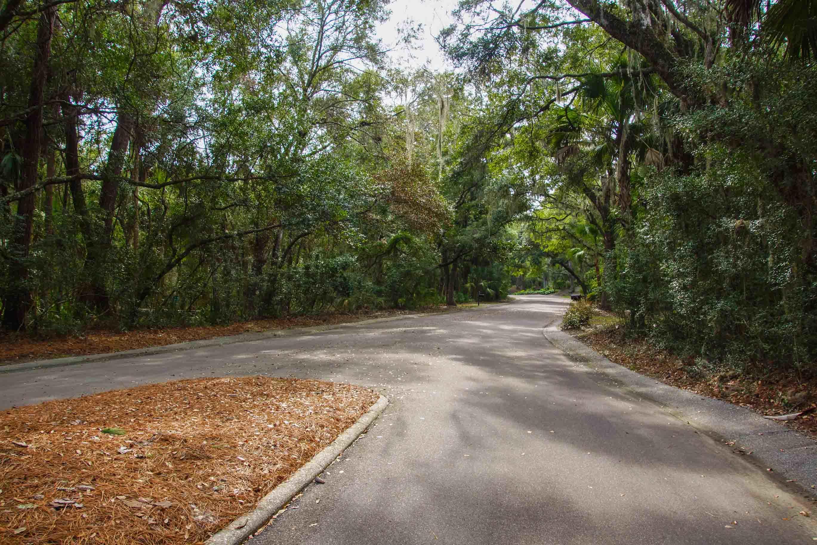 Seabrook Island Lots For Sale - 2675 Gnarled Pine, Seabrook Island, SC - 15