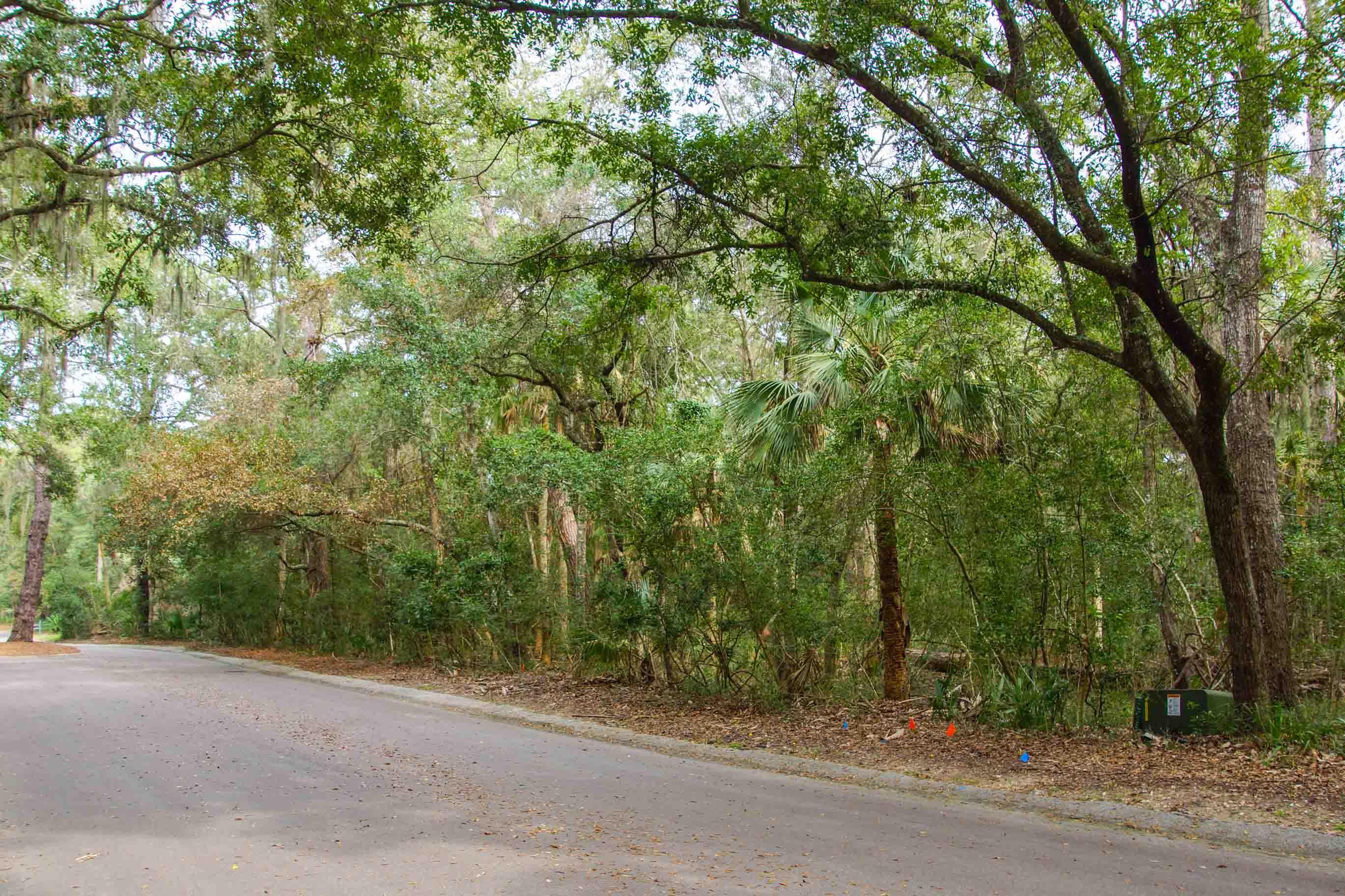 2675 Gnarled Pine Seabrook Island, SC 29455