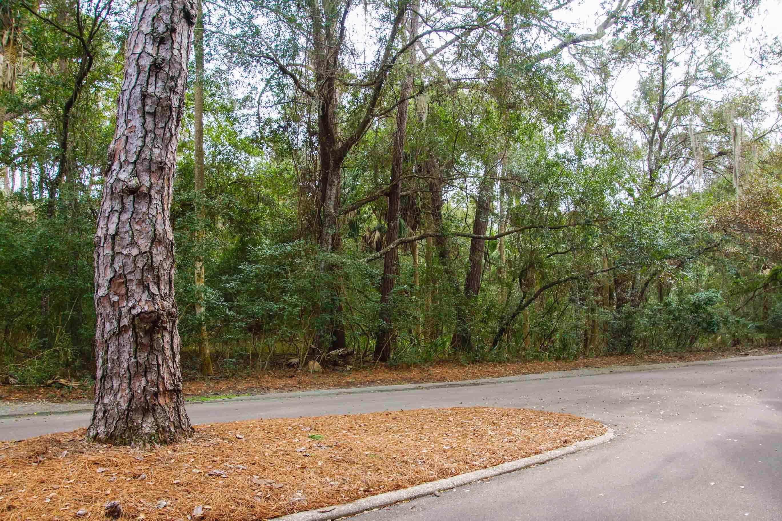 Seabrook Island Lots For Sale - 2675 Gnarled Pine, Seabrook Island, SC - 12