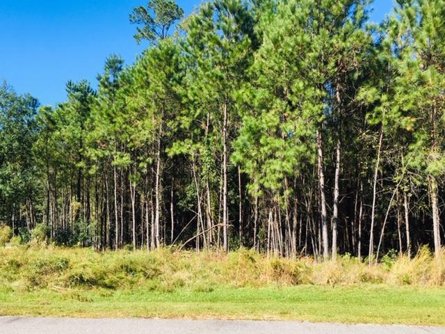 1143 Plantation Overlook Drive Moncks Corner, SC 29461
