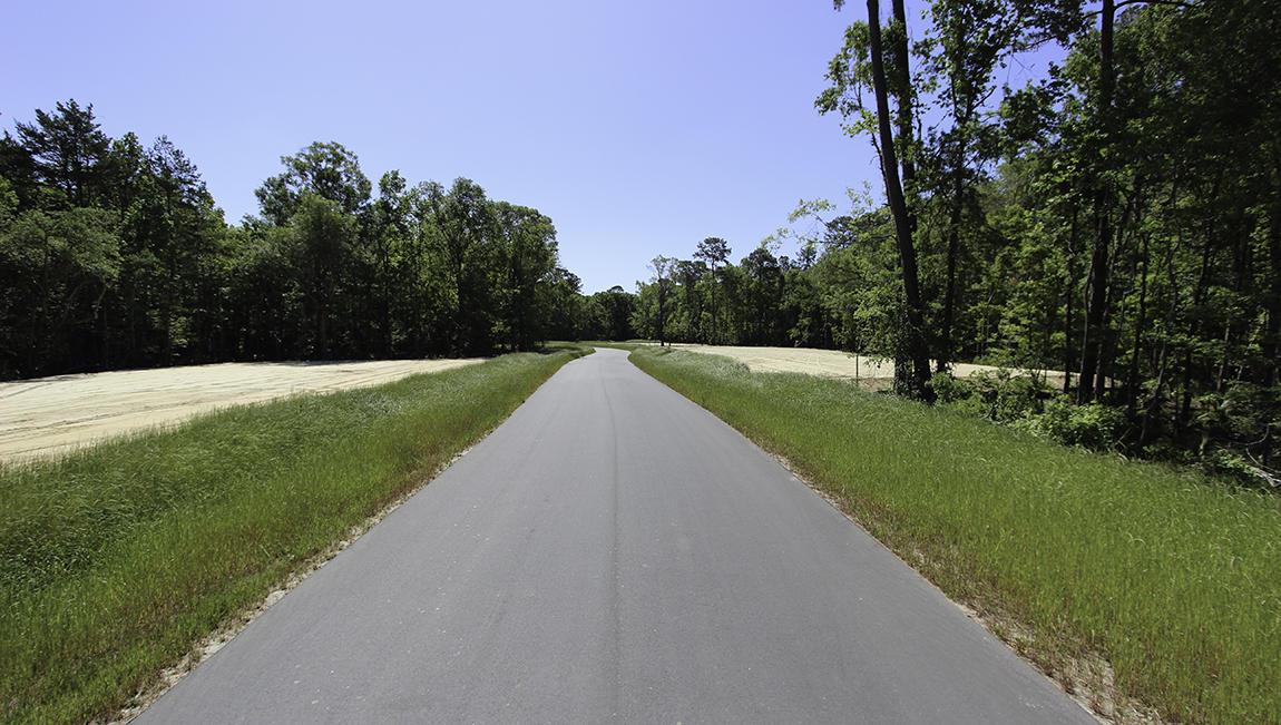 Hunt Club Homes For Sale - 2042 Syreford, Charleston, SC - 4