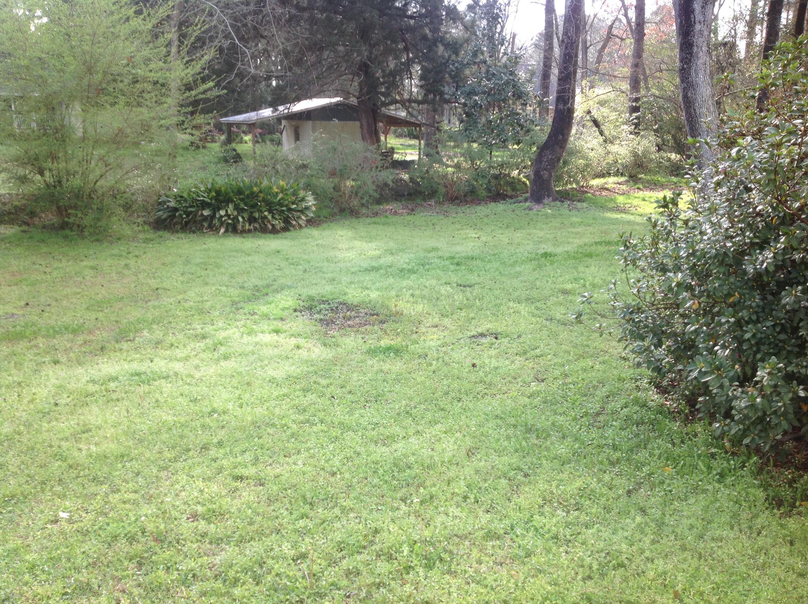 1423 Bennett Circle Holly Hill, SC 29059