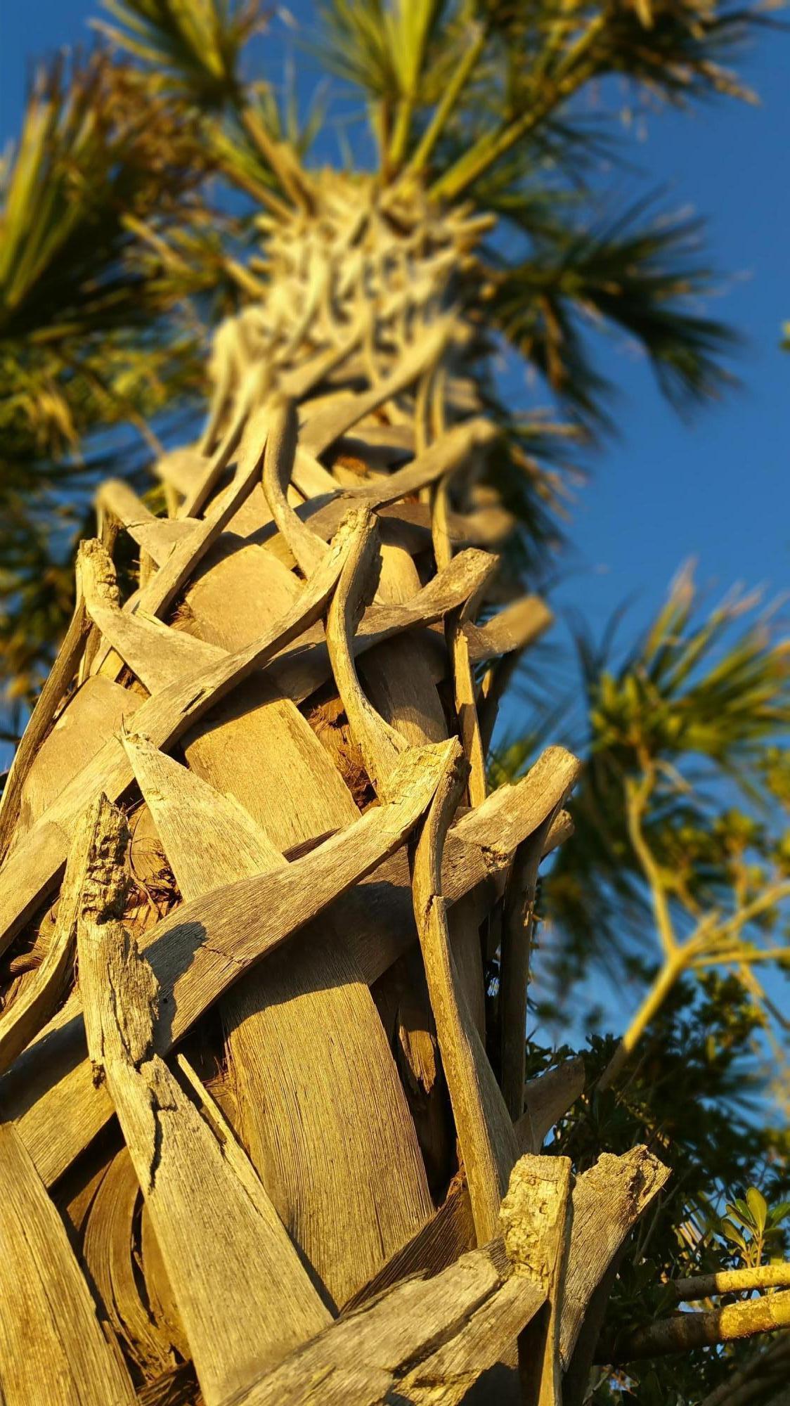 10 Mariners Cay Drive Folly Beach, SC 29439