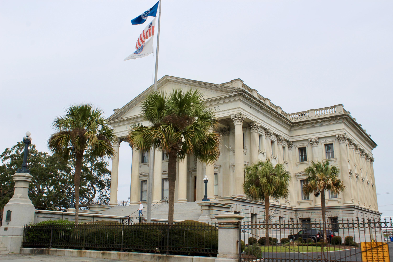 42 Dereef Court Charleston, SC 29403