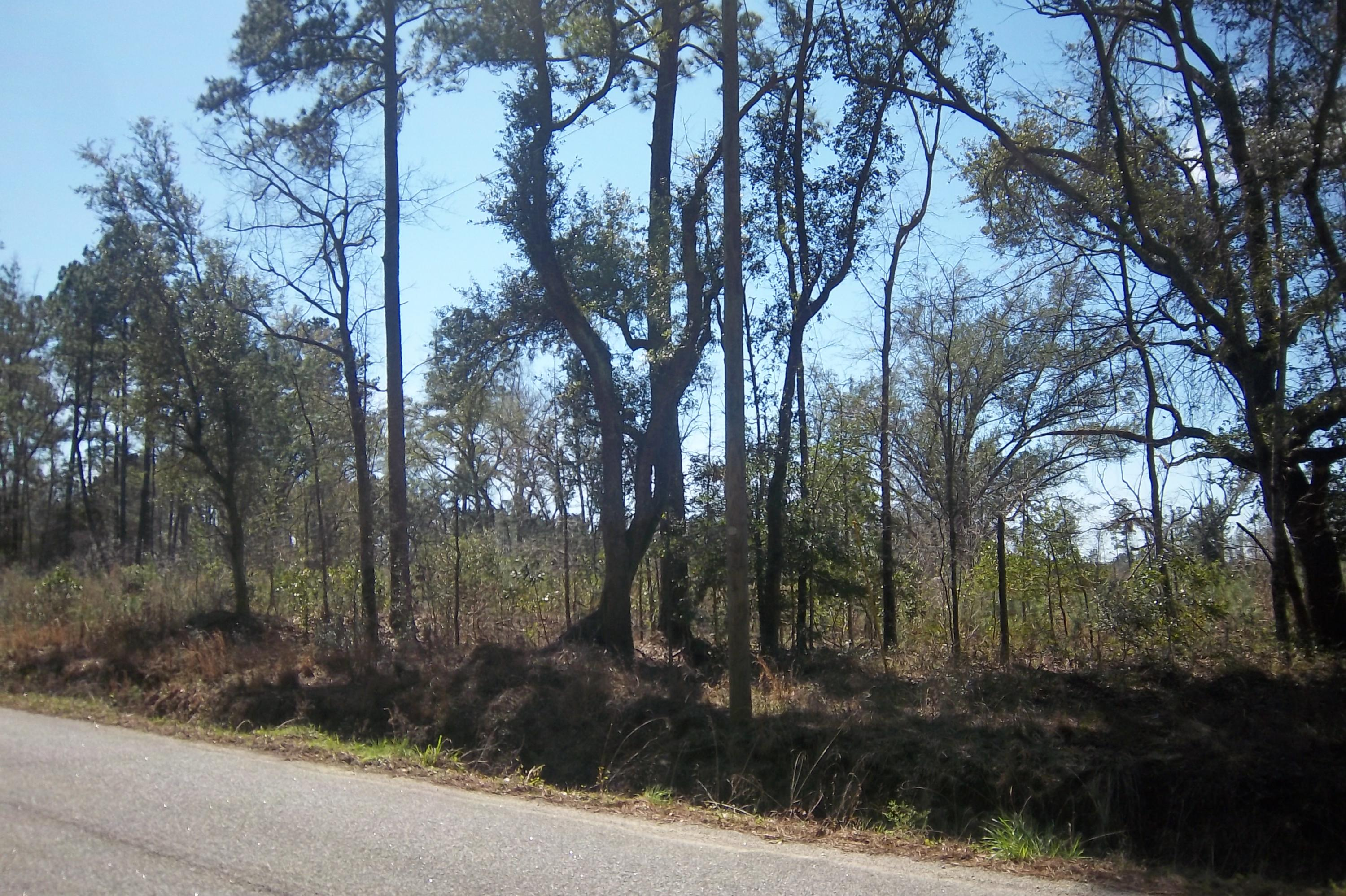 0 Lot 1 Salem Road Dorchester, SC 29437