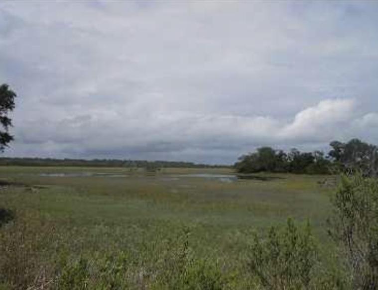 206 Jungle Shores Drive Edisto Island, SC 29438