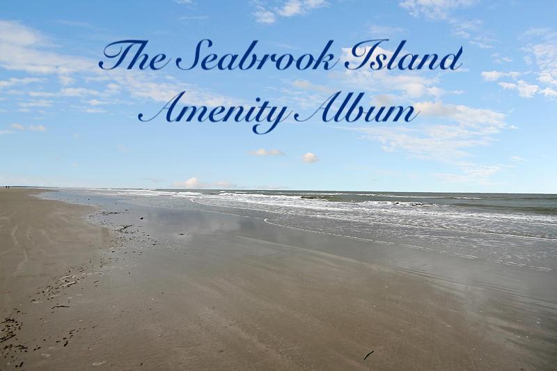3025 High Hammock Road Seabrook Island, SC 29455