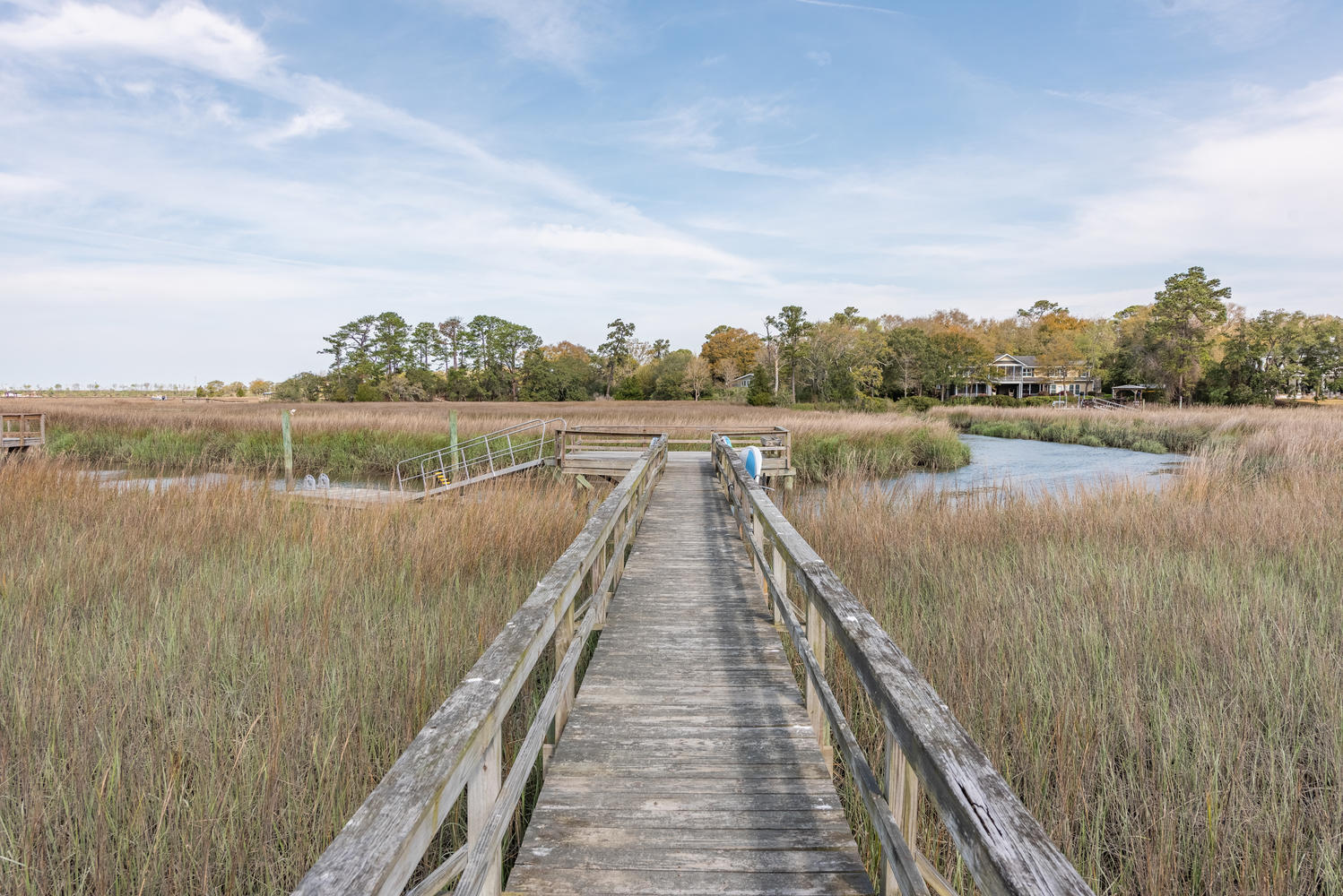 River Watch Homes For Sale - 124 Cape May, Mount Pleasant, SC - 24