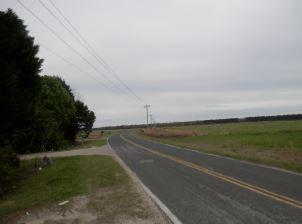 2323 George Harvin Road Manning, SC 29102