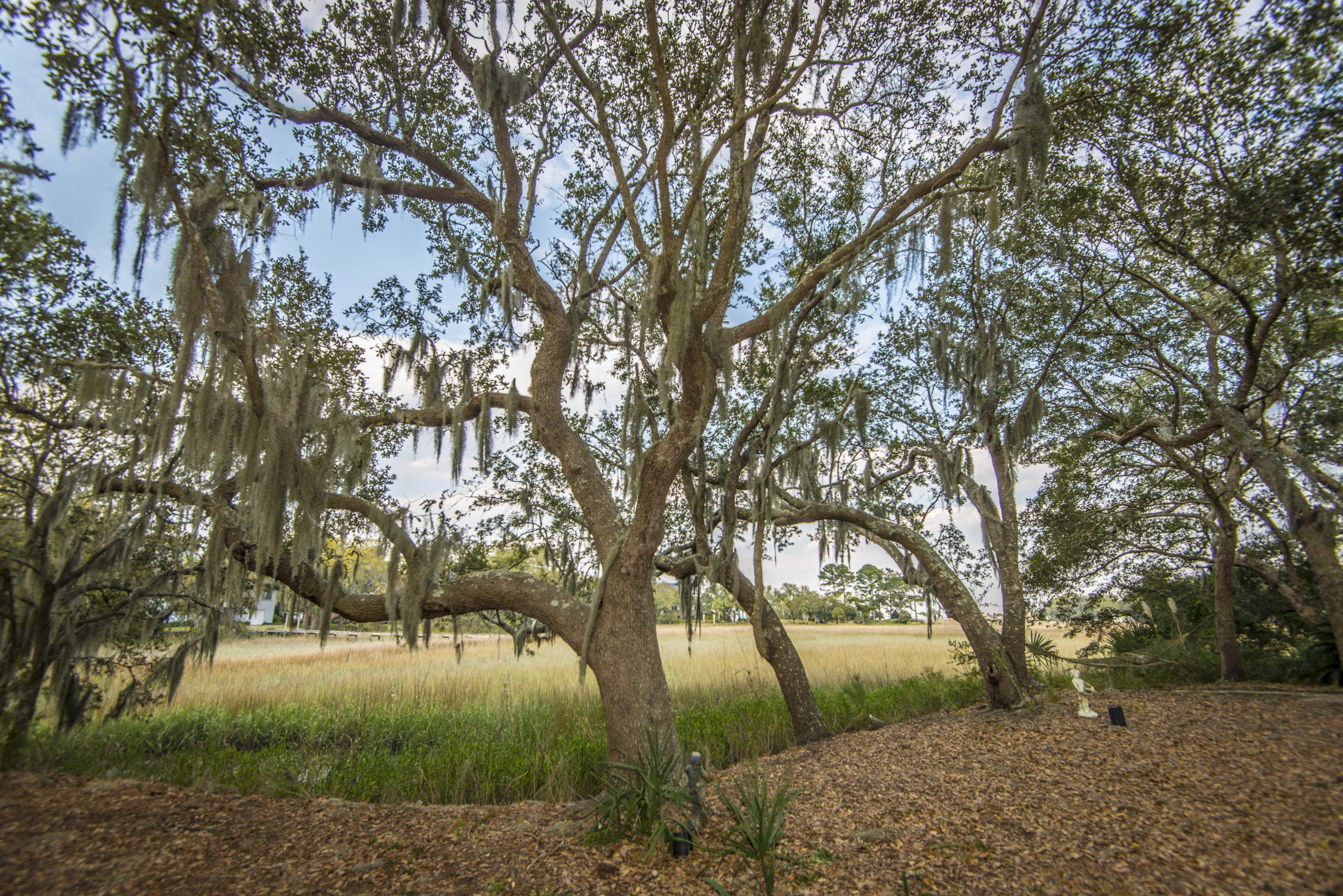 Stiles Point Plantation Homes For Sale - 906 Kushiwah Creek, Charleston, SC - 55