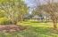Beautiful Majestic Greenspace