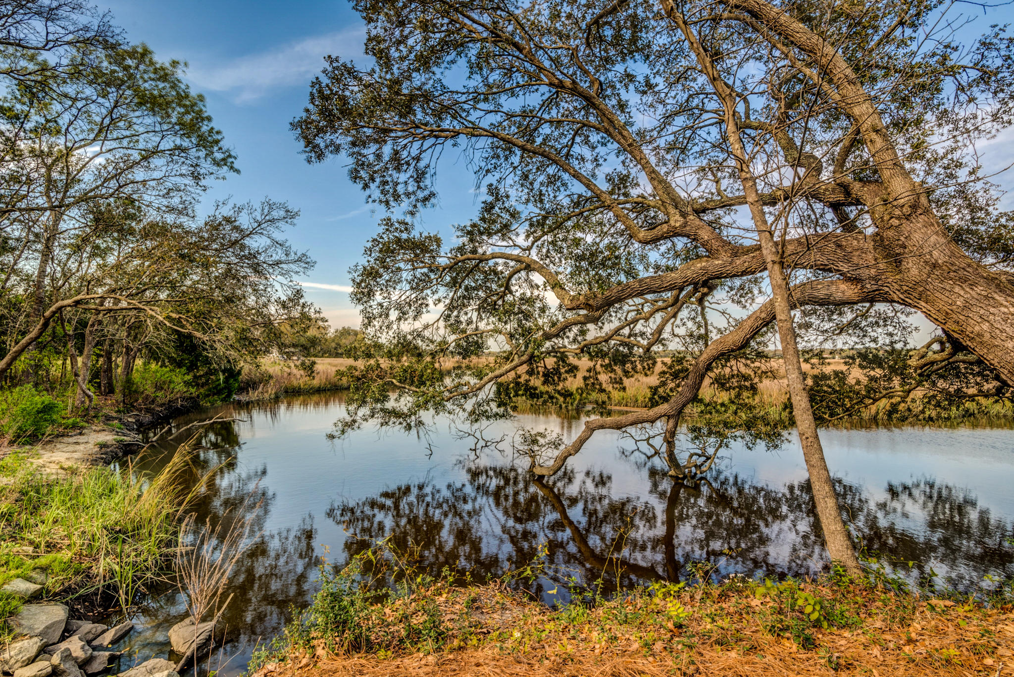 2210 Waterfowl Lane Charleston, SC 29414