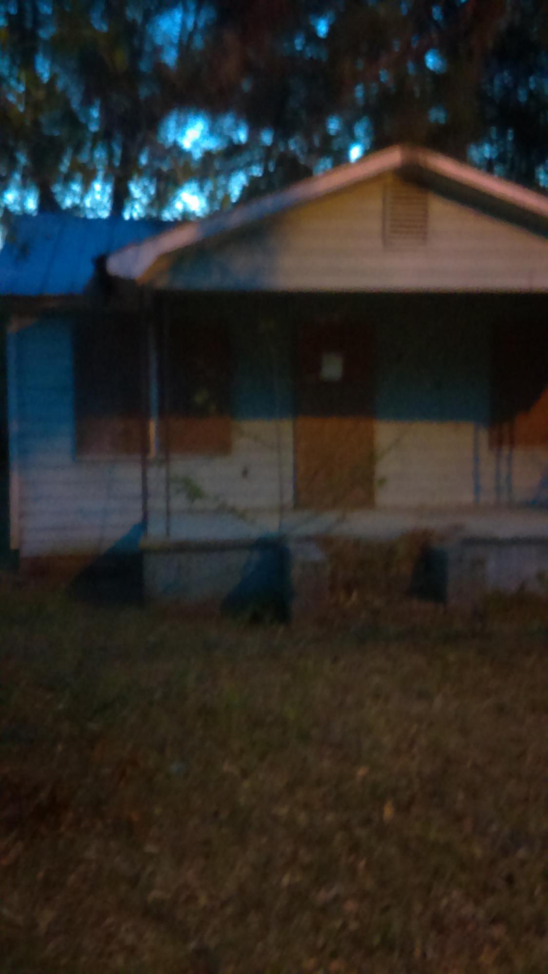 207 Ackerman Street Walterboro, SC 29488