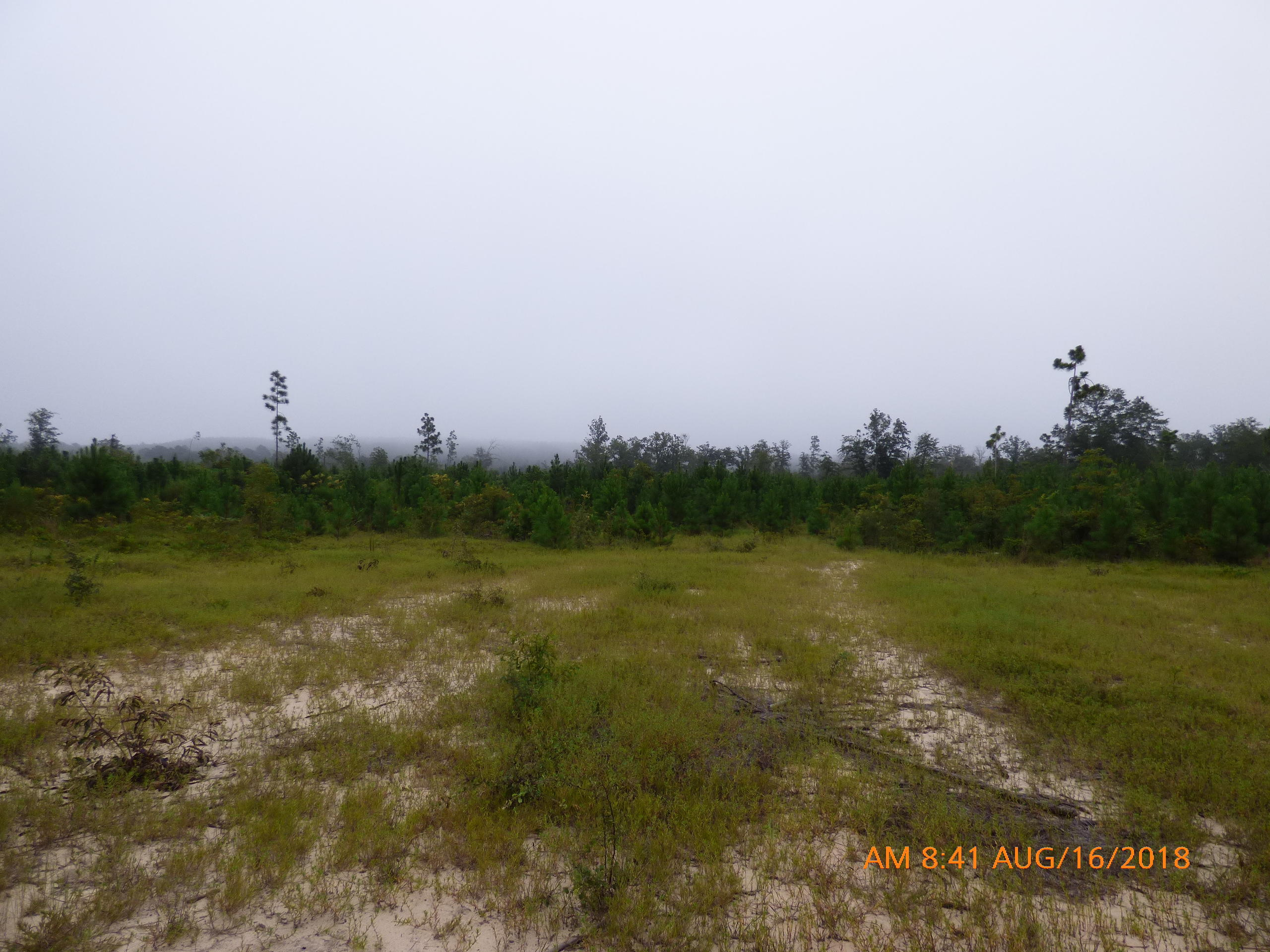 Hutto Pond Road Aiken, SC 29801