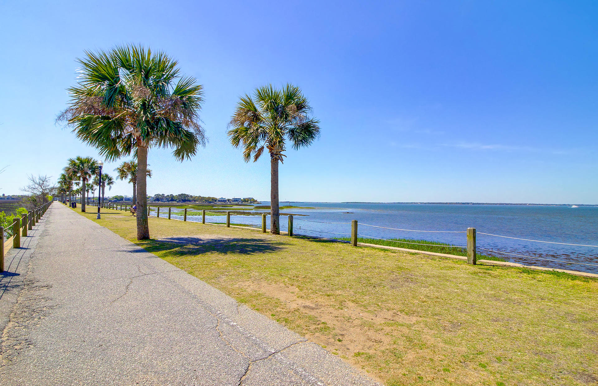Old Mt Pleasant Homes For Sale - 209 Greenwich, Mount Pleasant, SC - 75