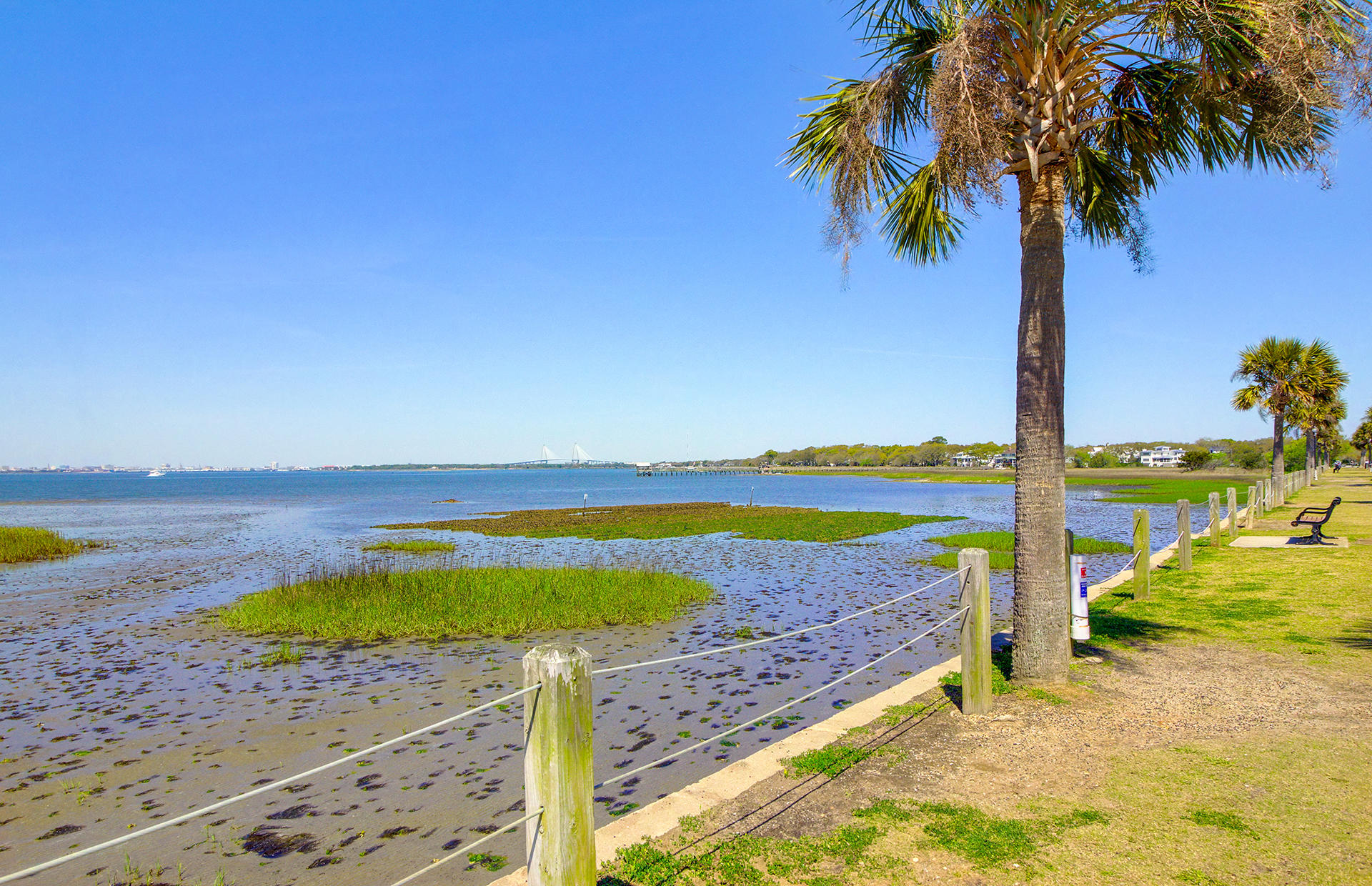 Old Mt Pleasant Homes For Sale - 209 Greenwich, Mount Pleasant, SC - 77