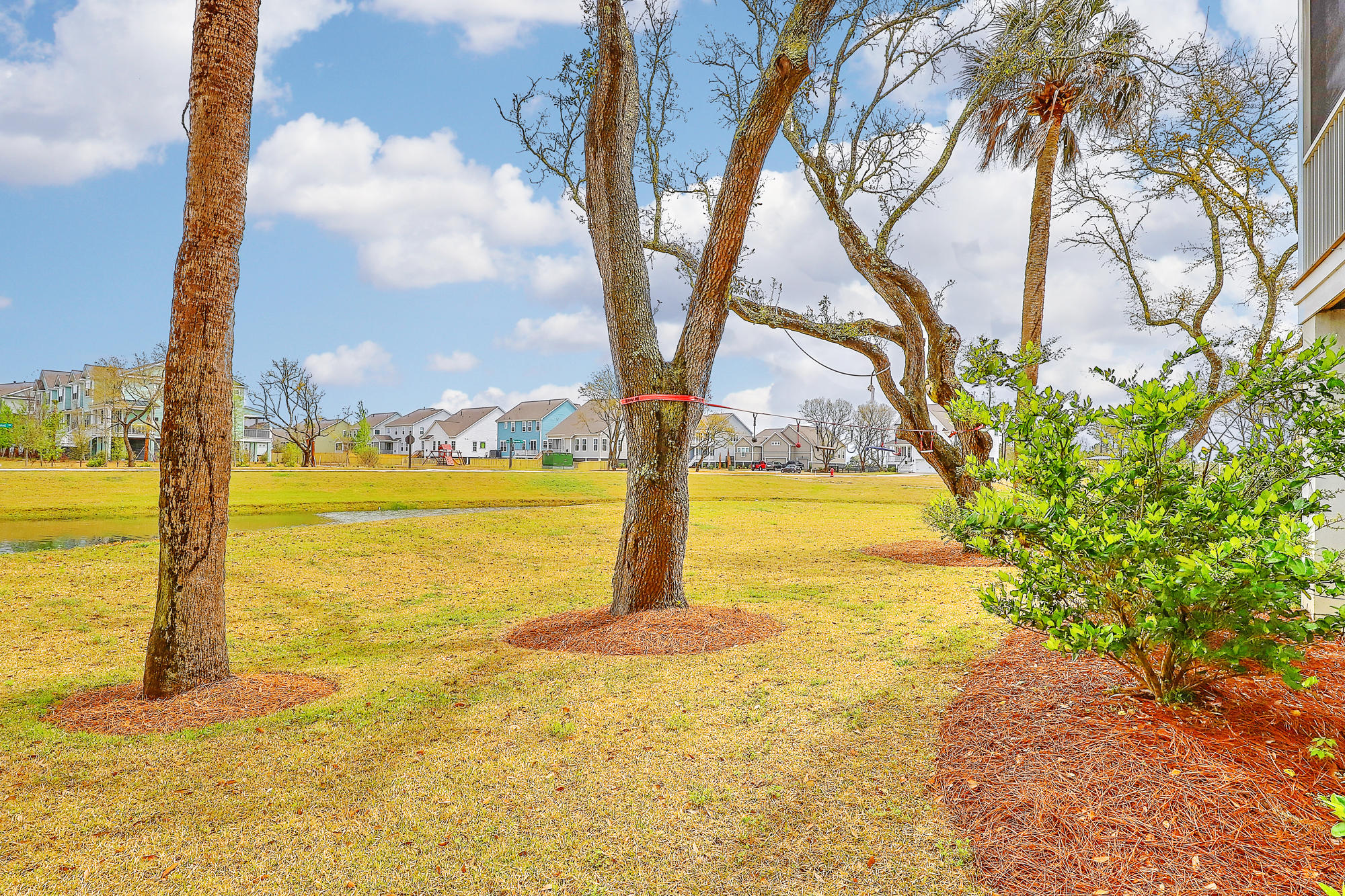 Oyster Point Homes For Sale - 1606 Red Tide, Mount Pleasant, SC - 15