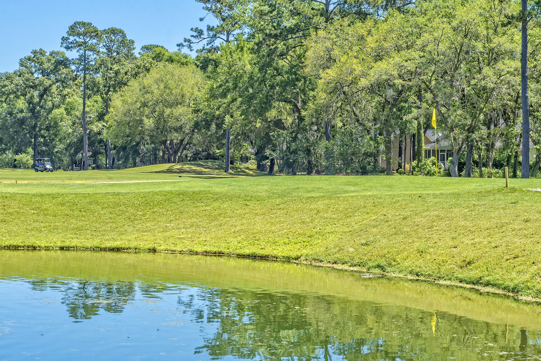 Stono Ferry Homes For Sale - 5104 St Ann, Hollywood, SC - 24