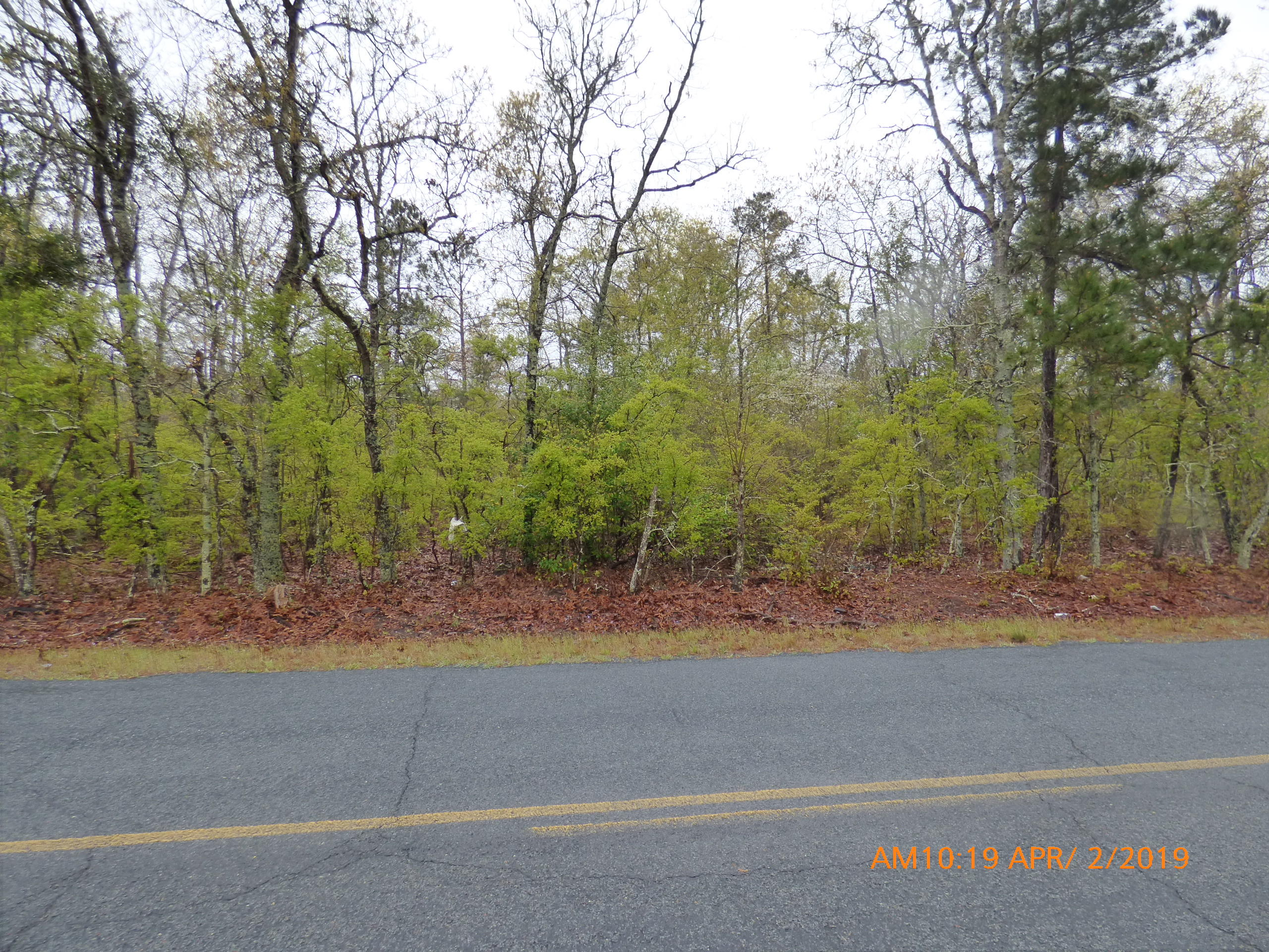 00 Old Shoals Road Monetta, SC 29105