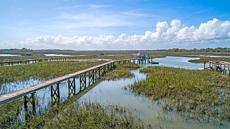 Wild Dunes Homes For Sale - 46 Seagrass, Isle of Palms, SC - 91