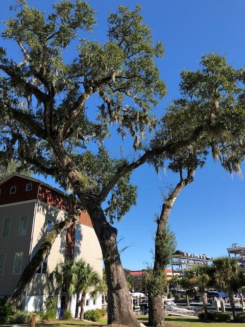 23 Transom Court Charleston, SC 29407