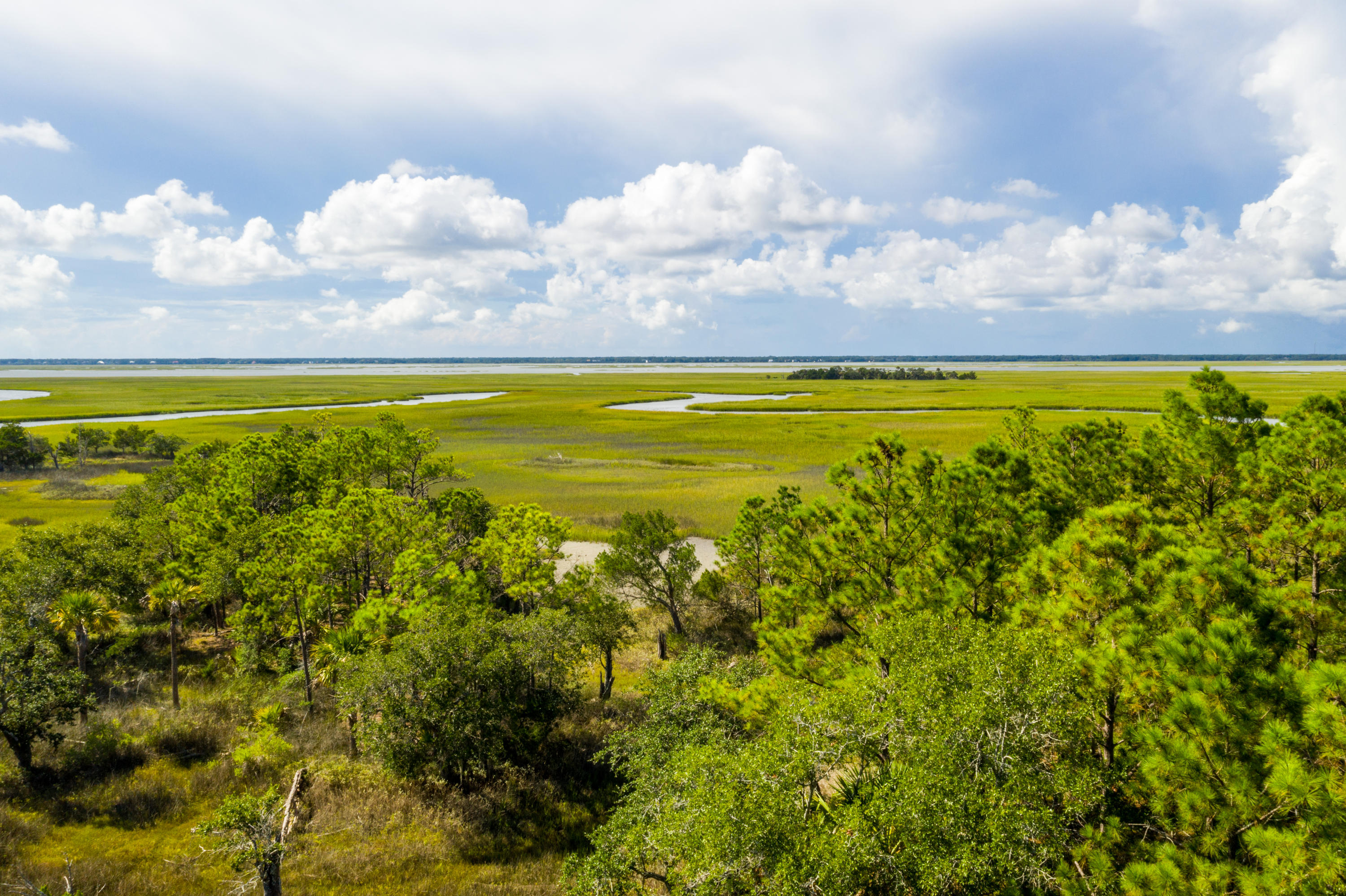 Lot 113 Old House Lane Dewees Island, SC 29451