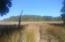 1789 Highway 41, Mount Pleasant, SC 29466
