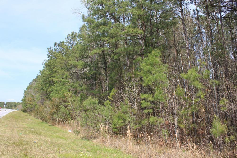 Highway 52 Bonneau, SC 29431