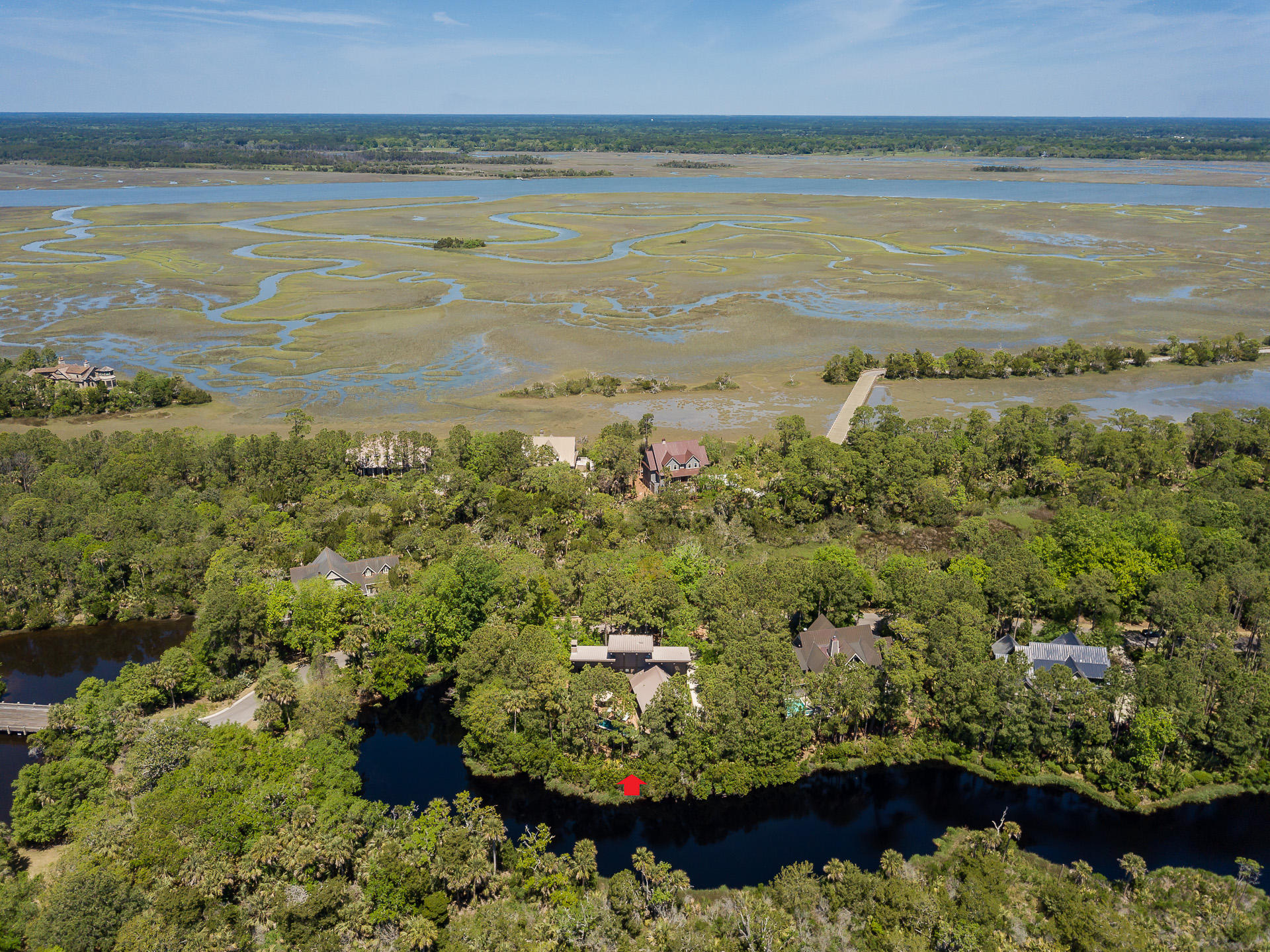 Kiawah Island Homes For Sale - 102 Blue Heron Pond, Kiawah Island, SC - 59