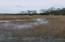 A marsh view from Masonborough Park dock area