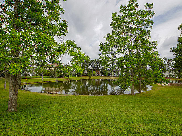 Rivertowne On The Wando Homes For Sale - 2104 Sandy Point, Mount Pleasant, SC - 33