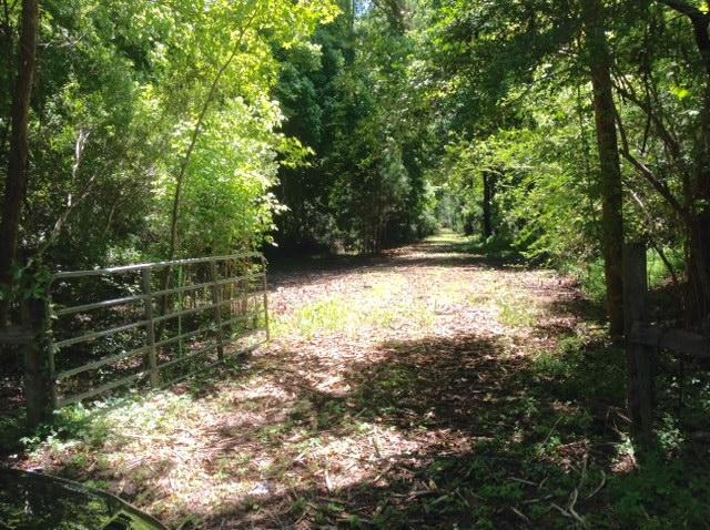 1 & 2 Summit Plantation Road Meggett, SC 29449