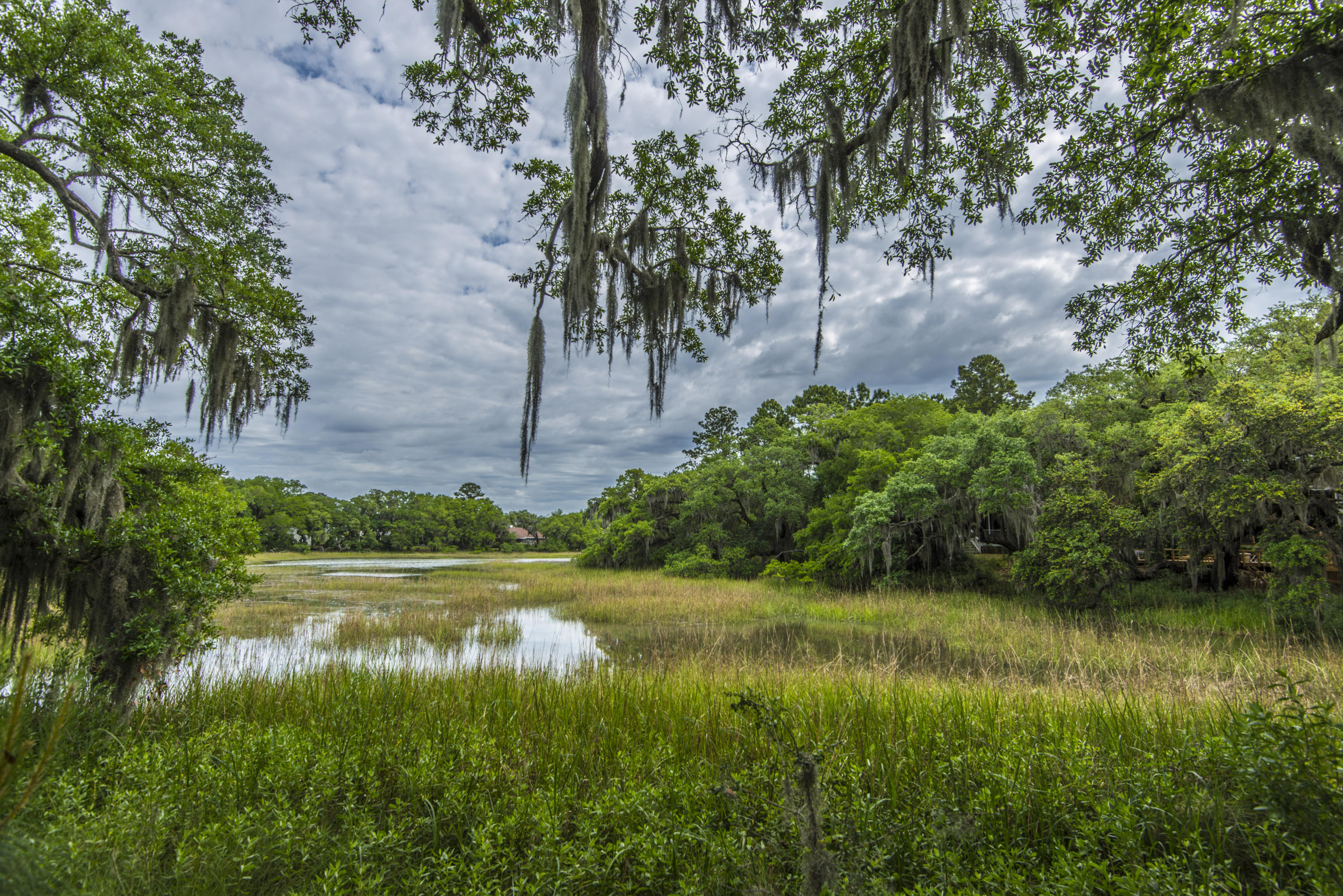 Stiles Point Plantation Homes For Sale - 921 Cotton House, Charleston, SC - 9